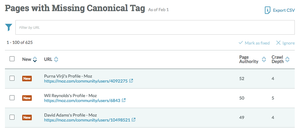 Moz Canonical Audit